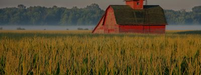 farm and crop insurance San Antonio TX